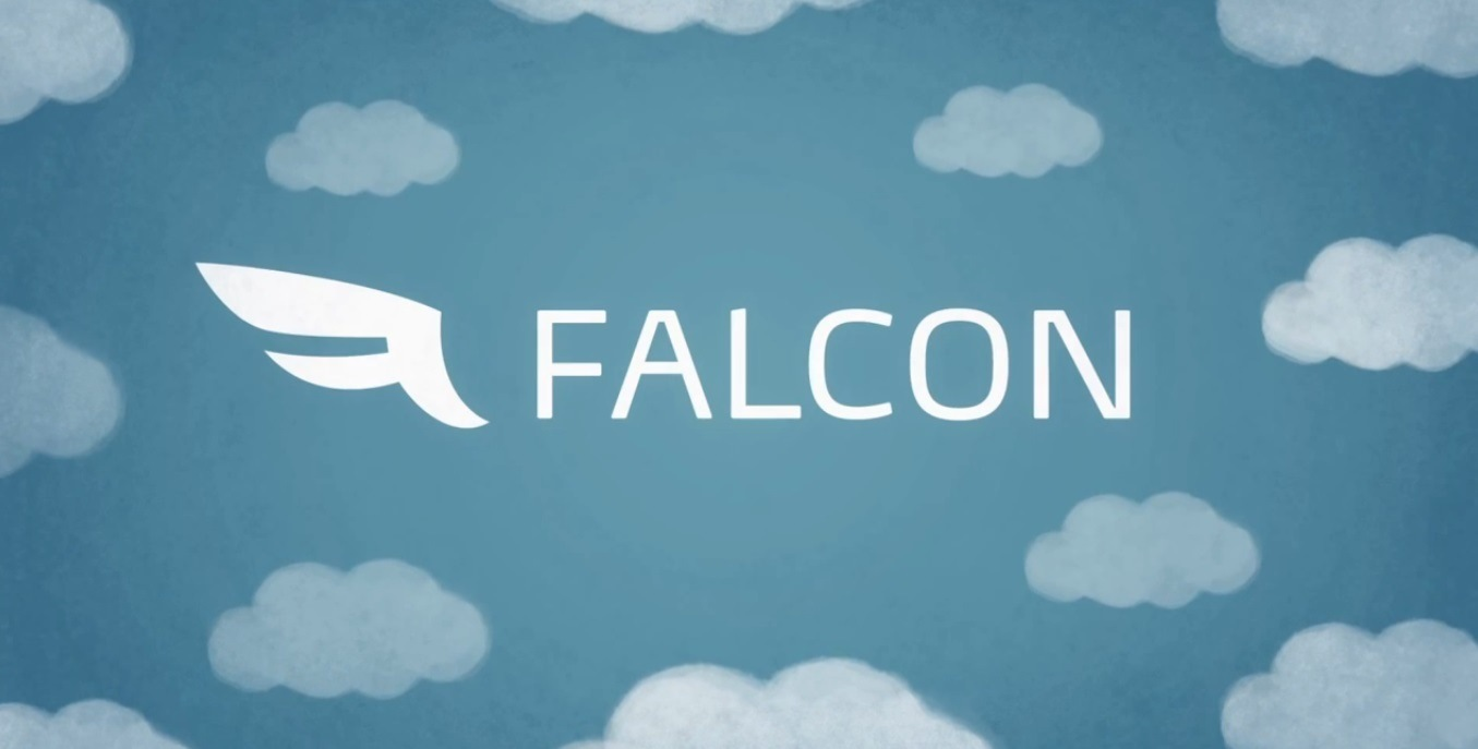 falconsocial